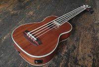 Countryman UB Electro Acoustic Bass Ukulele