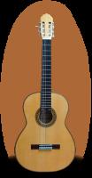 Joan Cashimira Model 87 Flamenco
